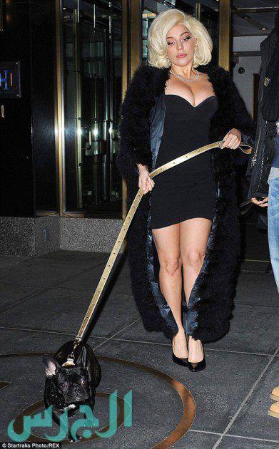 ليدي غاغا بفستان أسود قصير ومكشوف