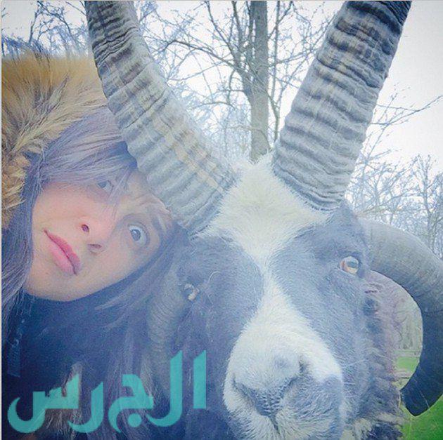 ياسمين عبد العزيز في صورة طريفة