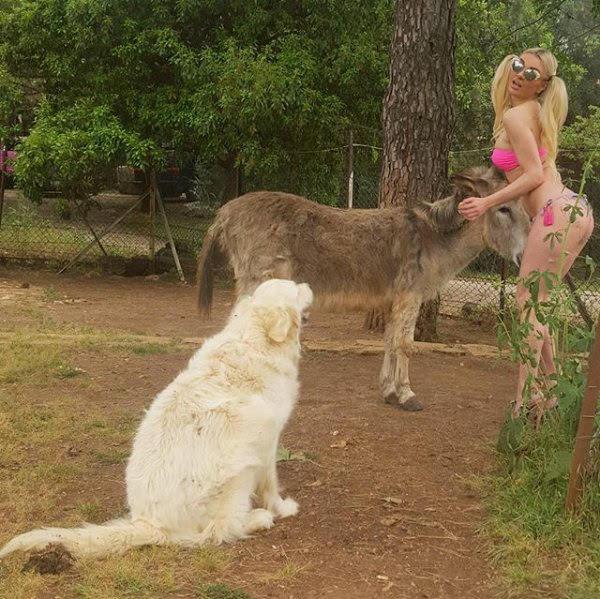 ميريام كلينك تغتصب حمار وتثير الكلب بصوراً قبيحة أظهرت فيها أنها تعاني عقلي